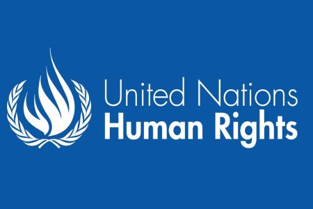 Image result for United Nations Human Rights Council